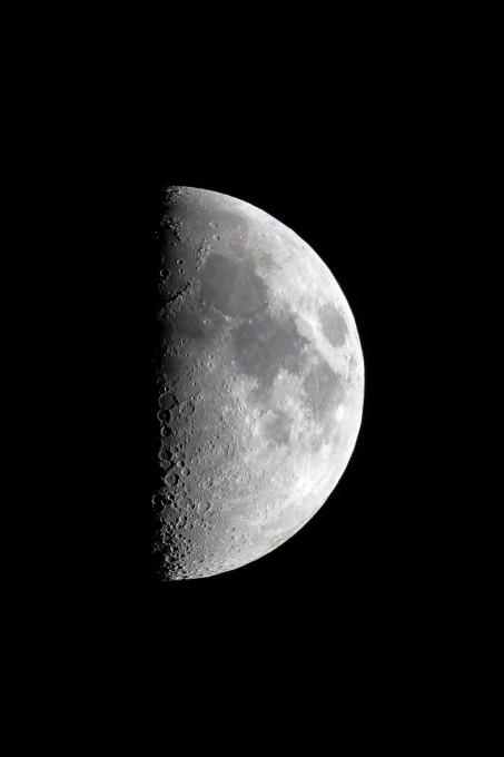月サンプル